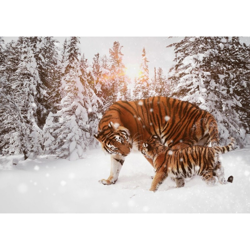 Tiger Snow Diamond P...