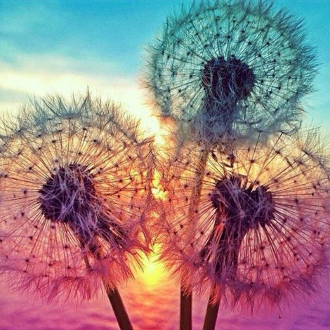 Rainbow Dandelion Clocks Diamond Painting Kit