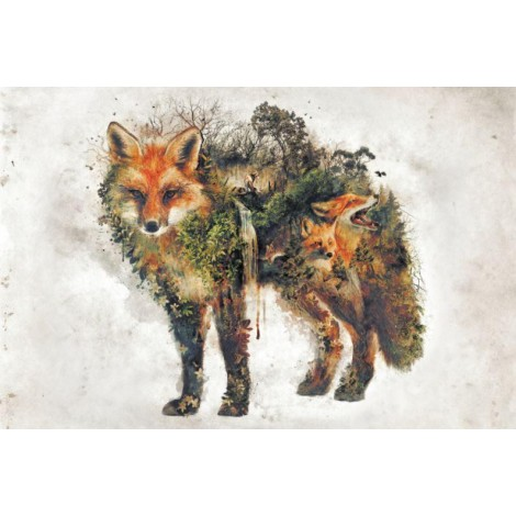 EXCLUSIVE BARRETT BIGGERS Surreal Fox